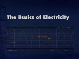 Appleton Group Basics of Electricity
